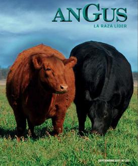 Revista Angus Nº 277