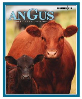 Revista Angus Nº 282