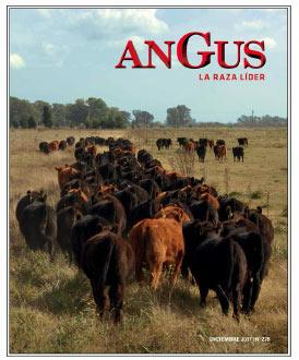 Revista Angus Nº 278