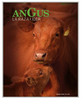 Revista Angus Nº 279