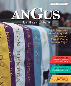 Revista 263 - Diciembre 2013