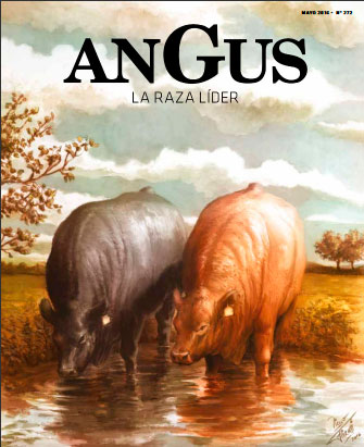 Revista Angus Nº 272